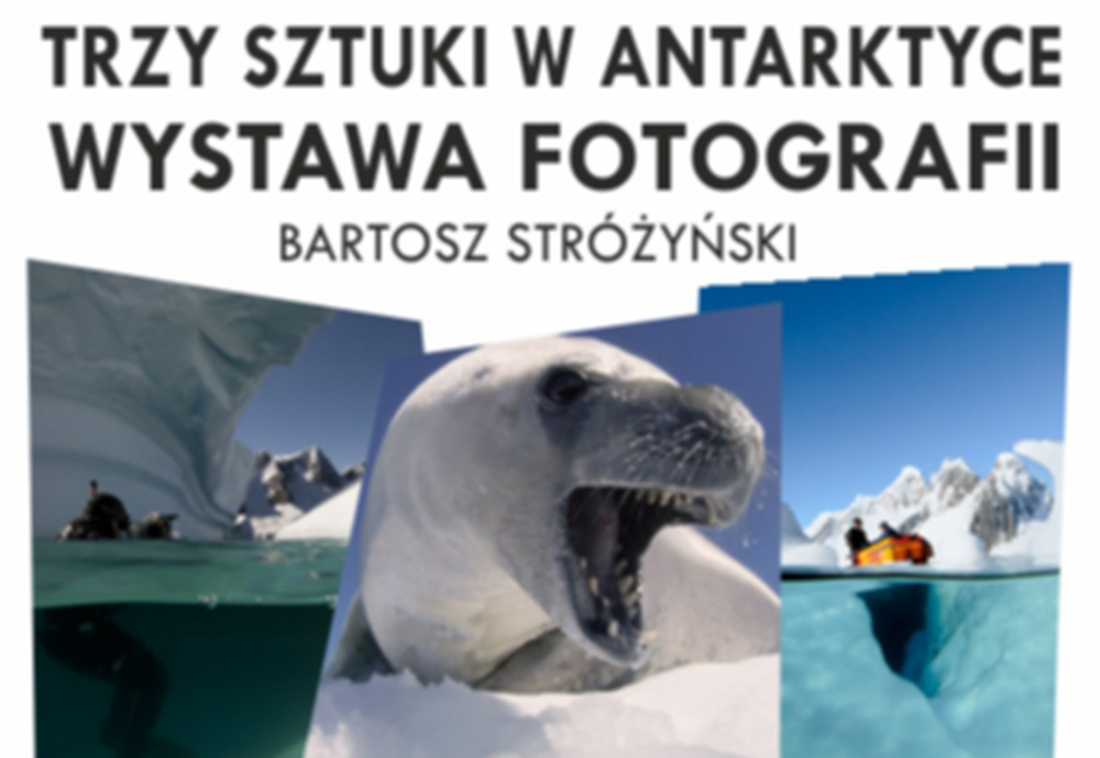 Trzy Sztuki wAntarktyce – Fotografia
