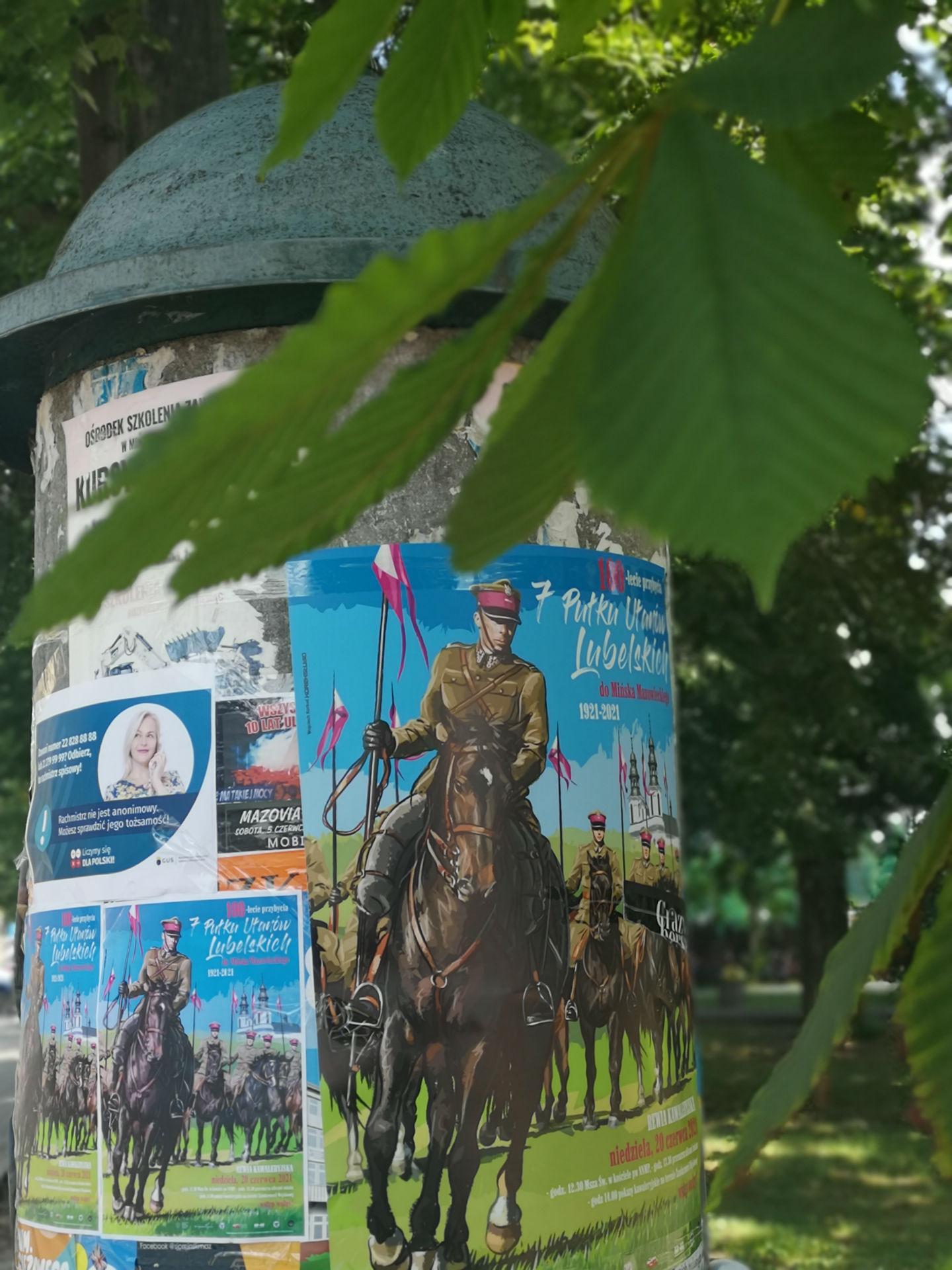 Słup ogłoszeniowy z plaktem reklamującym obchody 100-lecie przybycia 7 Pułku Ułanów Lubelskich do Mińska Mazowieckiego. W górnej części fotografi liść kasztanowca.
